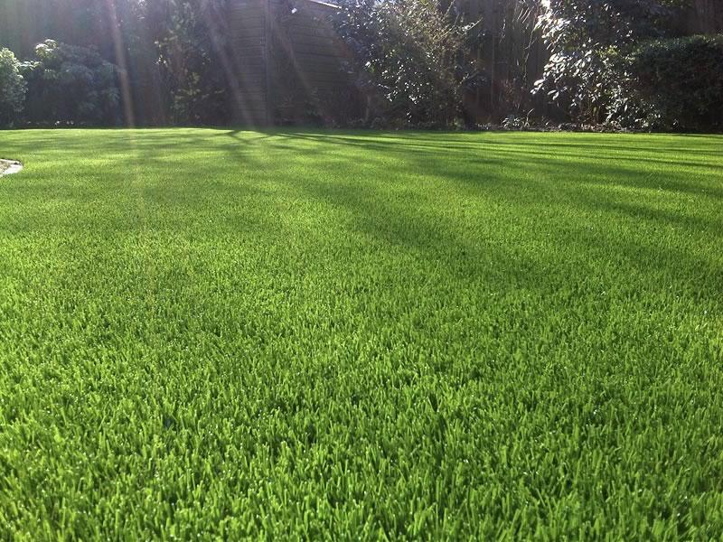 ARTIFICAL GRASS APPLICATIONS