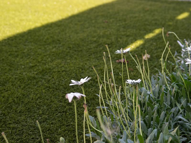 How to choose artificial grass